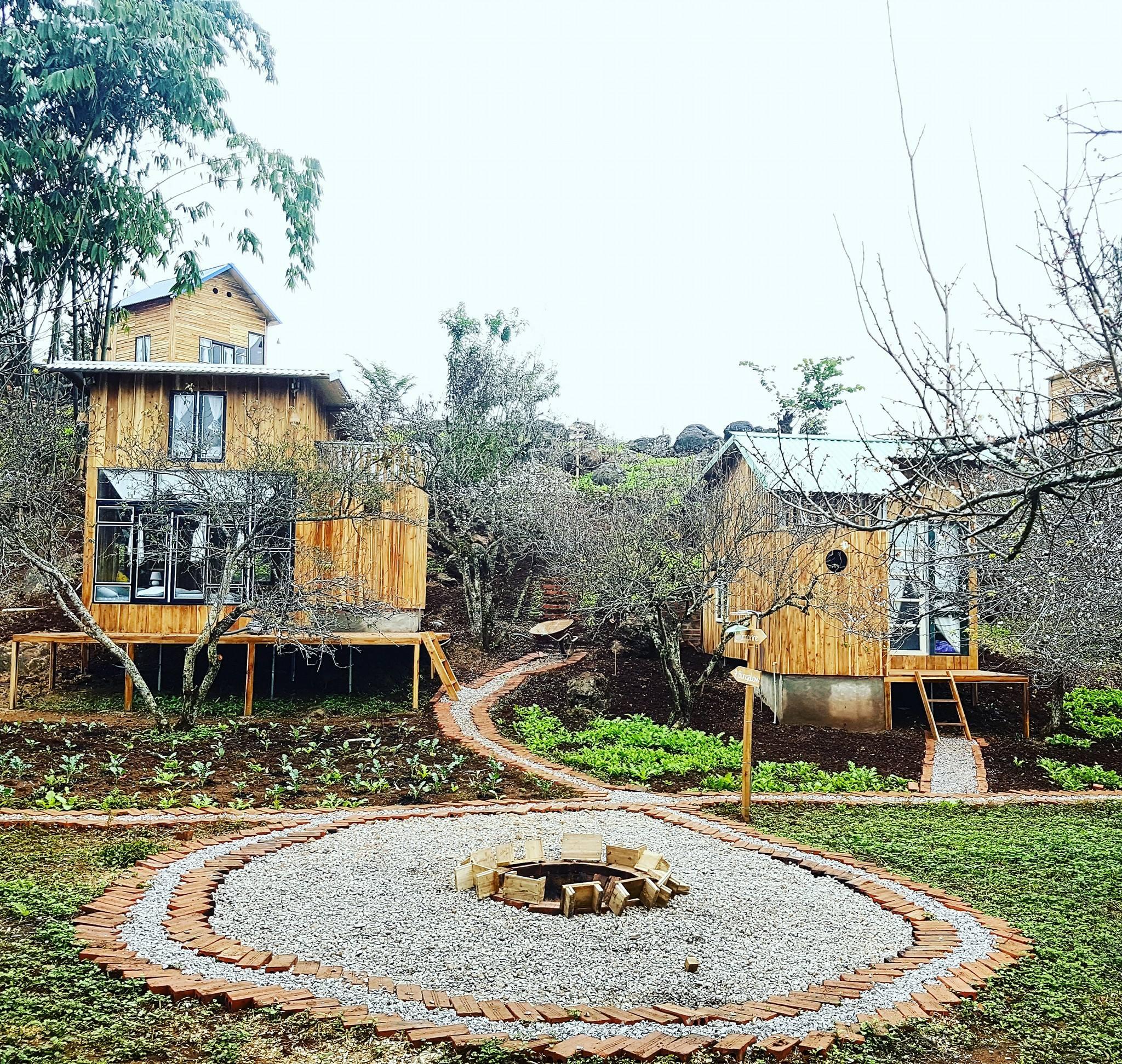 mama-house-hostel