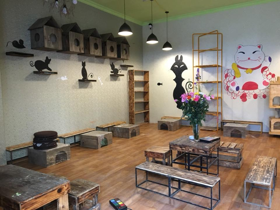 Cafe Mèo Mon- pet coffe hà nội