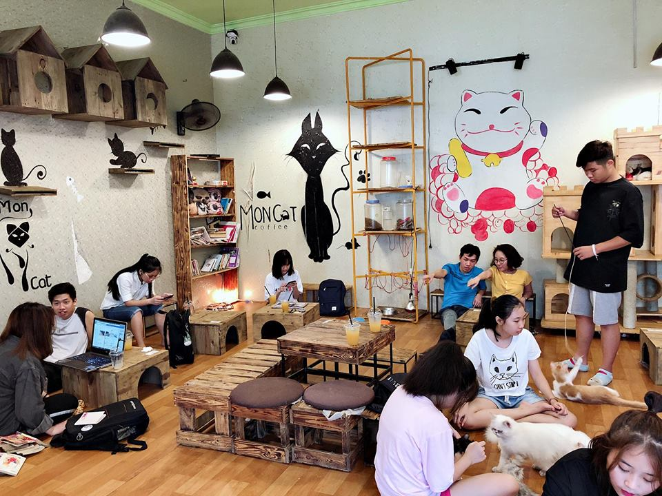 cafe Mèo Mon