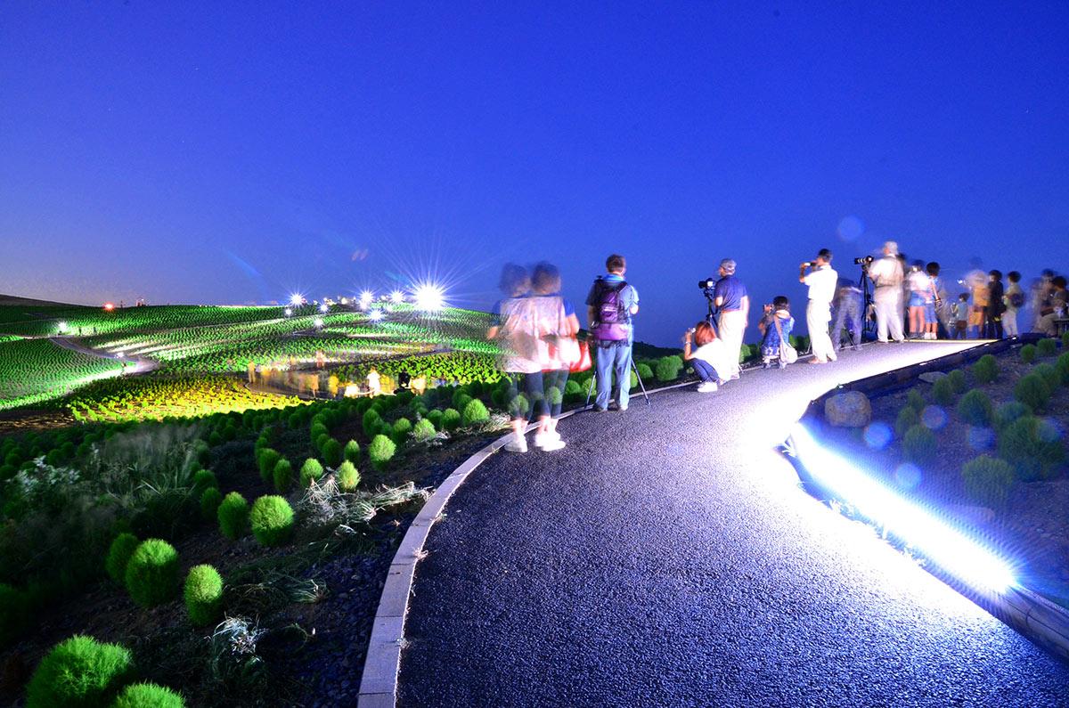 Thắp-đèn-buổi-tối-tại-công-viên-Hitachi-Seaside-1