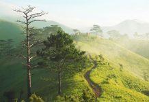 Du lịch treking Tà Năng