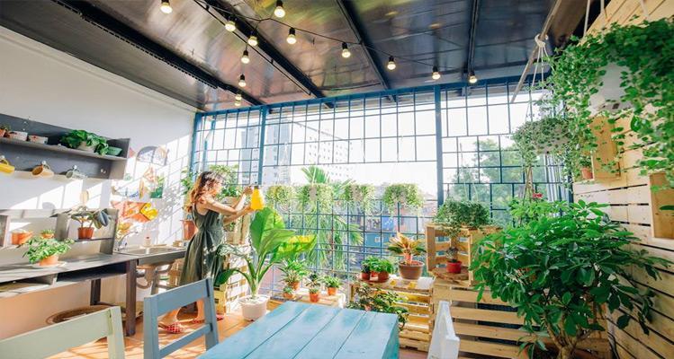 Phòng Garden tạo mang lại sự gần gũi với thiên nhiên