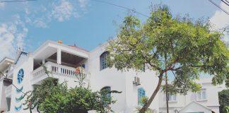 Villa Hoa giấy