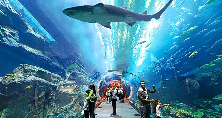 Vinpearl Aquarium Times City