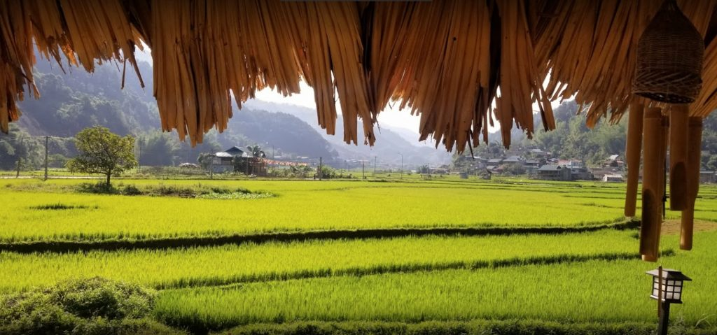 Sanh Nhơn Homestay