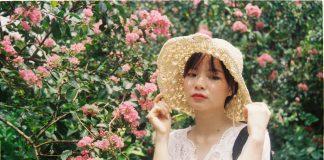 Con đường hoa tường vi đẹp như mơ tại Hà Nội