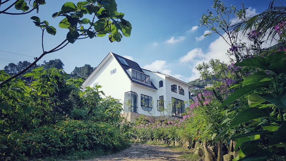 Homesty LeVent Tam Đảo