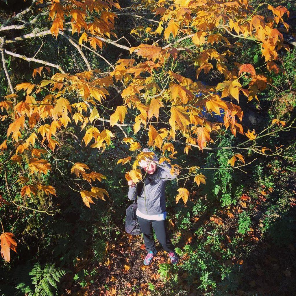 Vẻ đẹp Tả Liên Sơn vào mùa thu