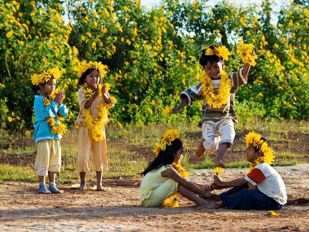 Tháng 10 là tháng của hoa dã quỳ Đà Lạt.