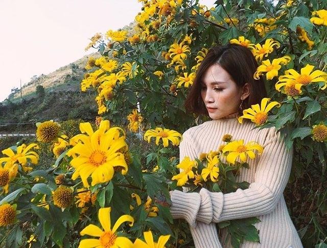 Nếu bạn đi Đà Lạt vào tháng 10, tháng 11 thì đây sẽ là khoảng thời gian hoa dã quỳ nở đẹp nhất. Thành phố Đà Lạt như được thay một màu áo mới có phần tươi sáng hơn so với nét trầm buồn vốn dĩ.