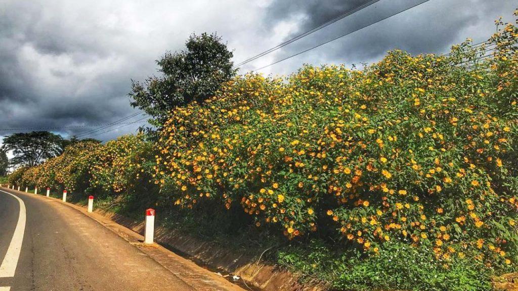 Đà Lạt - Quốc lộ 20 - Liên Khương - Nam Ban - Tà Nung