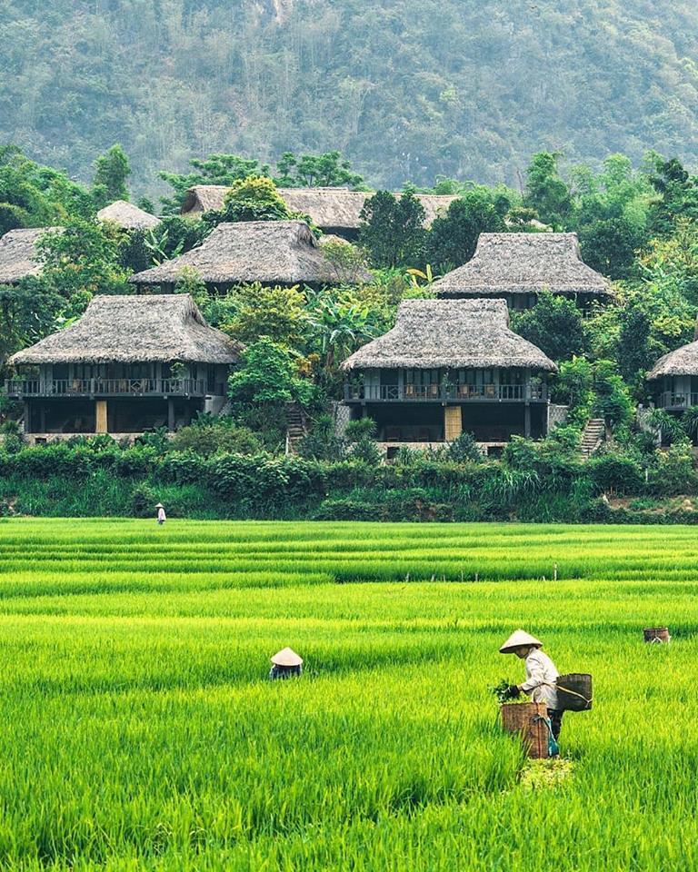 Mai Châu Ecolodge là một thiên đường nghỉ dưỡng sinh thái nằm giữa thung lũng Mai Châu với khung cảnh thiên nhiên yên tĩnh, tuyệt đẹp.