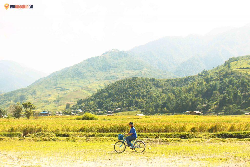 Cánh đồng thơ mộng ở chân đèo Khau Phạ
