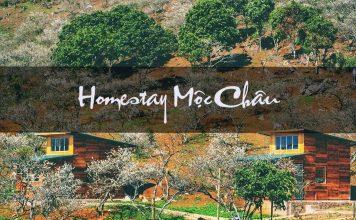 Homestay đẹp Mộc Châu