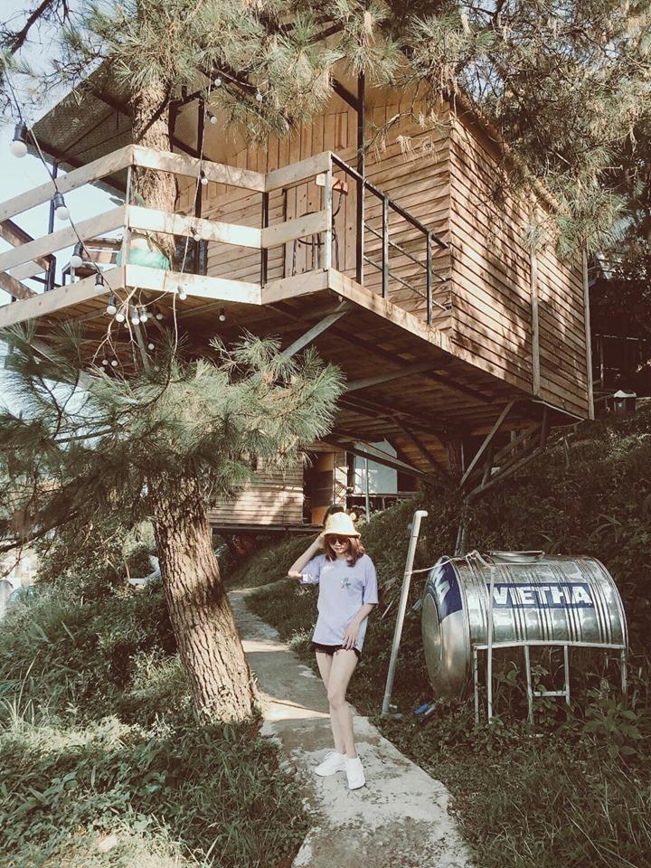 Nhà Trên Cây - Tree House