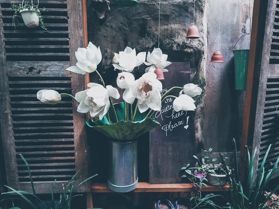 Mỗi ngày, không gian quán lại trở nên đẹp hơn nhờ những bình hoa tươi. Nào là: hoa sen, hoa cúc, hoa loa kèn, hoa vàng anh,...những loài hoa đều giản dị, thanh khiết được trang trí dưới bàn tay đầy nghệ thuật của chủ quán.