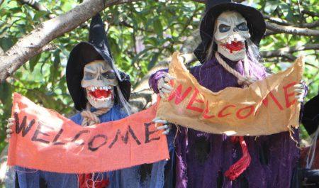 Halloween ở ông viên văn hóa Đầm Sen