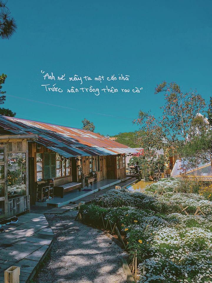 Tiệm cà phê Túi Mơ To nằm bên cạnh Reply1994 Đà Lạt, một homestay xinh xắn cho ta cảm giác như lạc về Đà Lạt xưa.