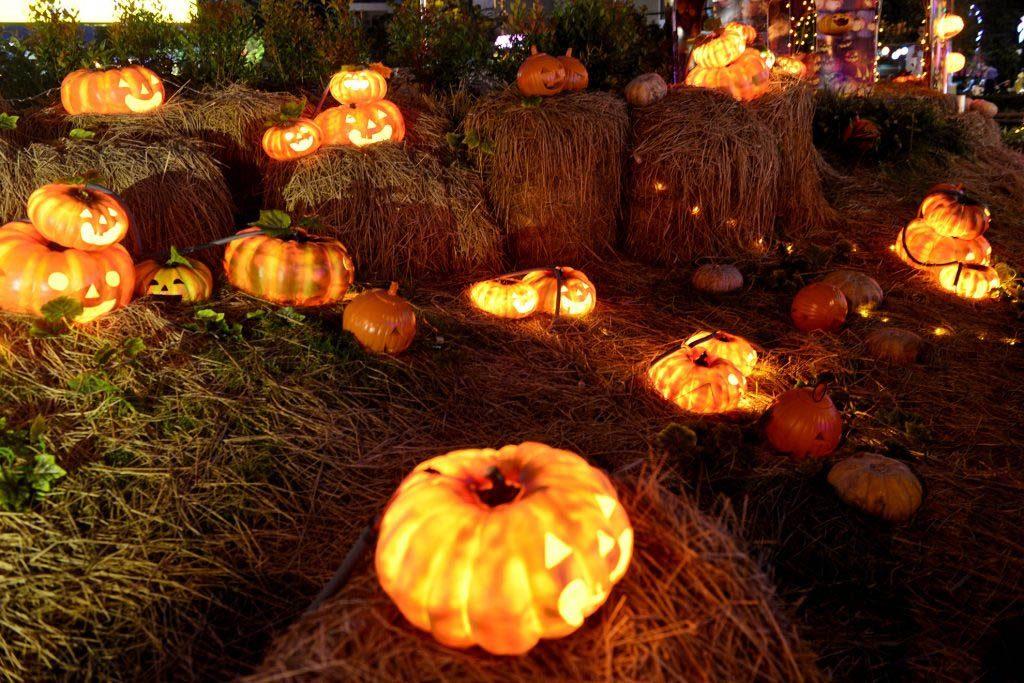 Hoạt động cho ngày Halloween - trang trí Halloween
