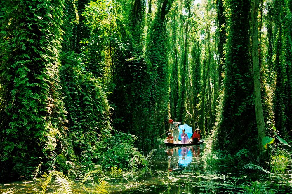 Rừng tràm đẹp nhất Việt Nam
