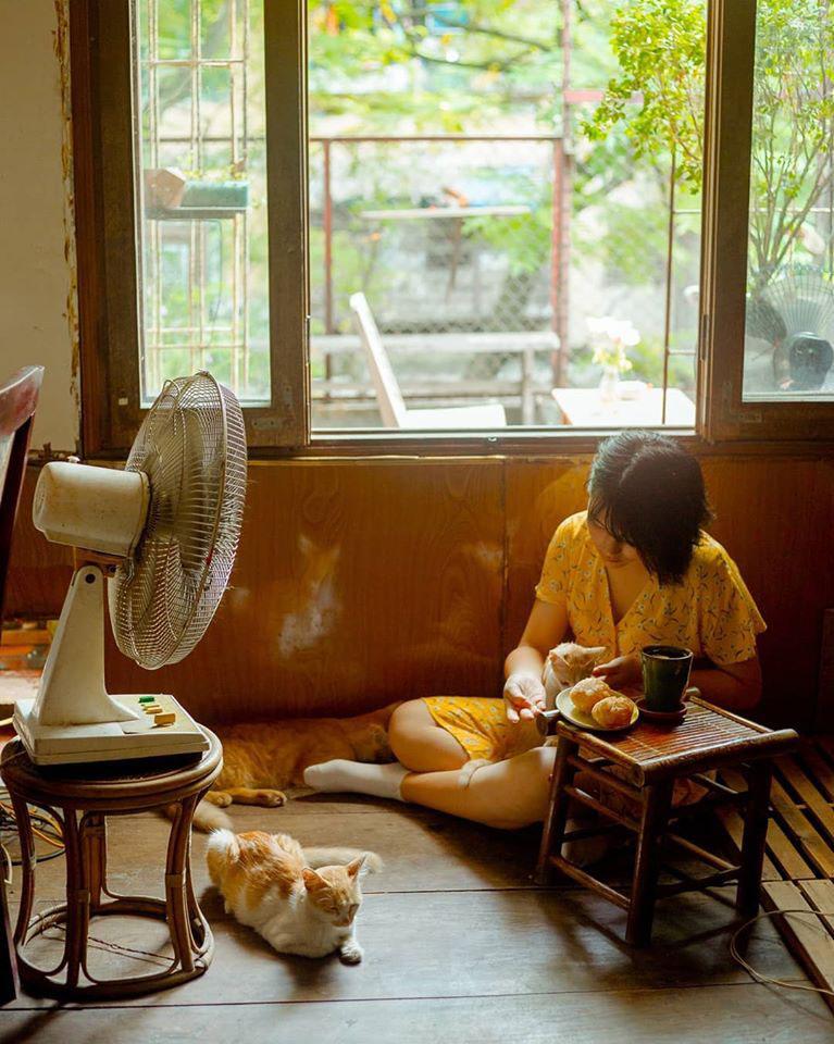 Địa chỉ cafe Hà Nội