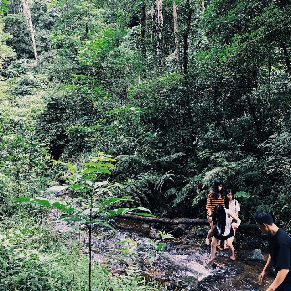 Du khách đi bộ tham quan vườn