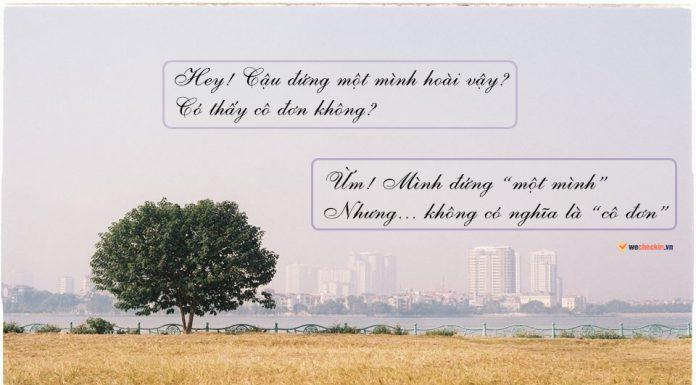 Ảnh cây cô đơn dọc Việt Nam