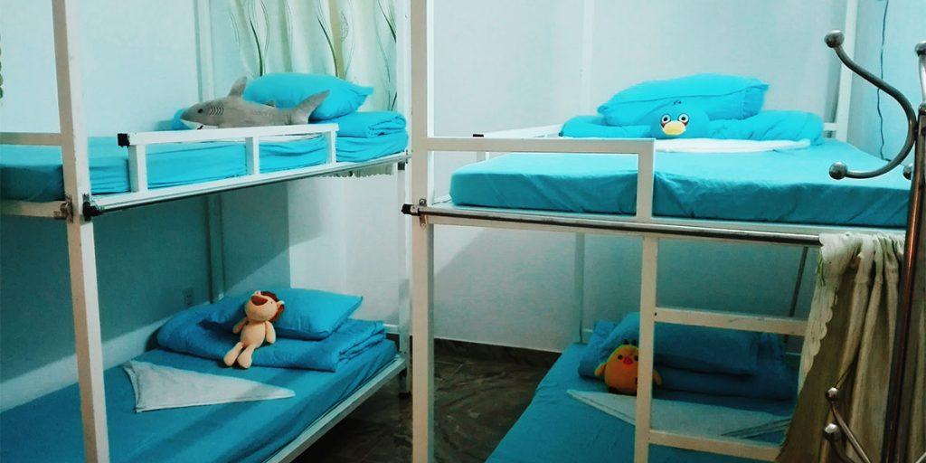 Phòng dorm cũng rất thoải mái