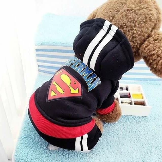 Quần áo siêu nhân cho thú cưng vô cùng đẹp mắt