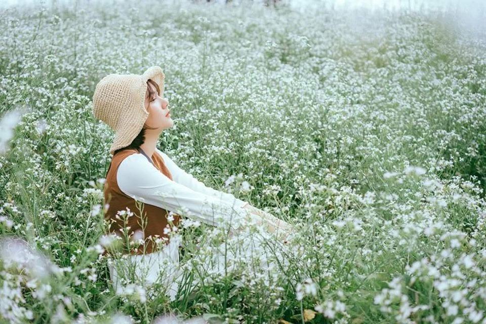 check in với hoa cải trắng với phong cách châu âu ngay trong lòng Mộc Châu