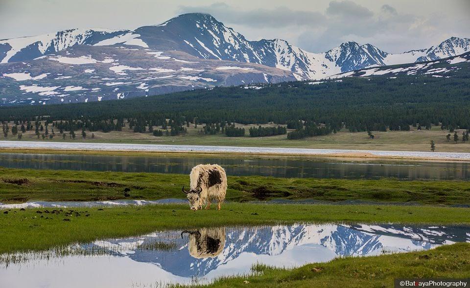 Vẻ đẹp như chưa từng được khai phá của vùng núi Altai nổi tiếng đẹp bậc nhất Châu Á