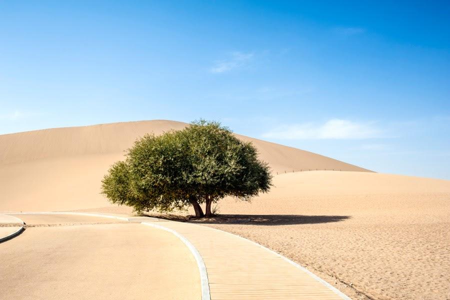 Trên sa mạc vẫn còn lưu lại những vết tích của những công trình cổ hay những dấu tích của các thương nhân Trung Hoa, Ả Rập từ bao đời nay.