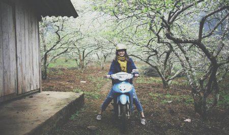 Đi xe máy lên Mộc Châu mùa mận chín
