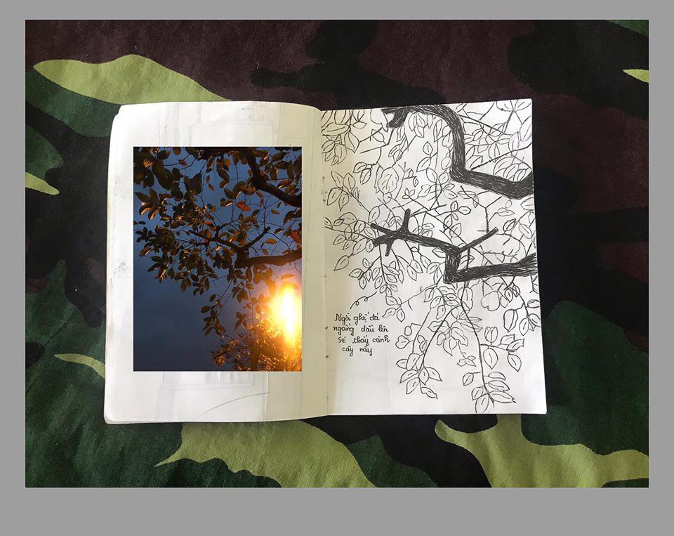 Buổi tối dưới tán cây bàng trong khu vực cách li - Nhật ký cách ly 14 ngày