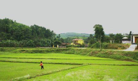 Peperhouse homestay Qaurng Bình view đẹp