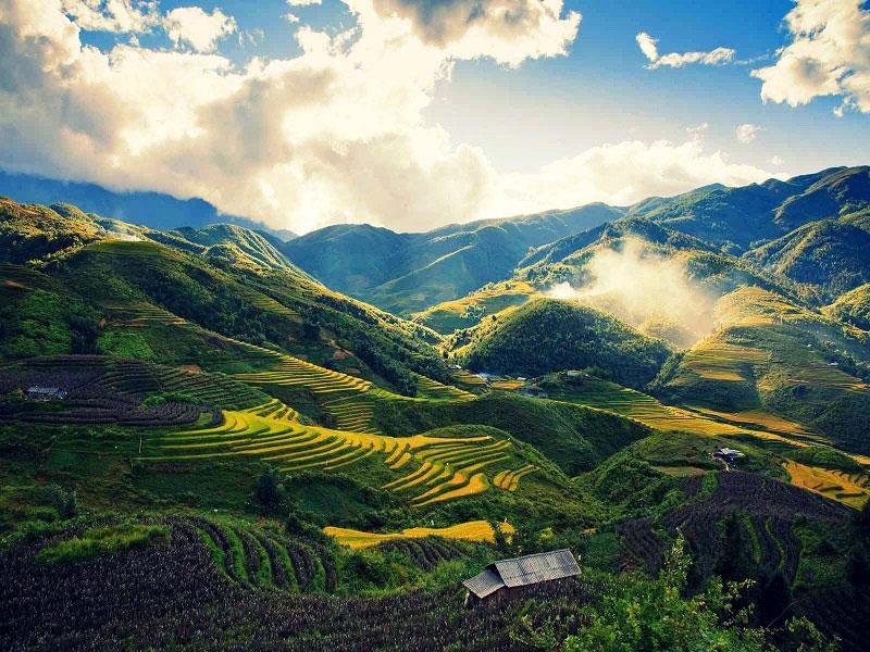 Mùa lúa chín ở thung lũng Mường Hoa