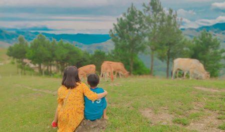 Pu Nhi Farm