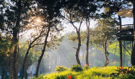 Pu Nhi Farm Bắc Yên
