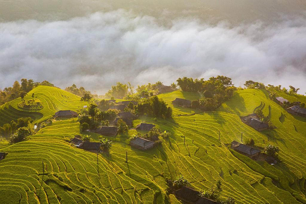 Điểm săn mây ngắm lúa đẹp - Hoàng Su Phì