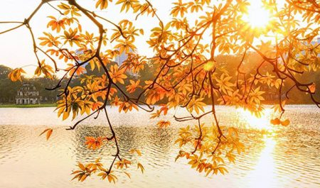 Mùa thu Hà Nội ảnh đẹp