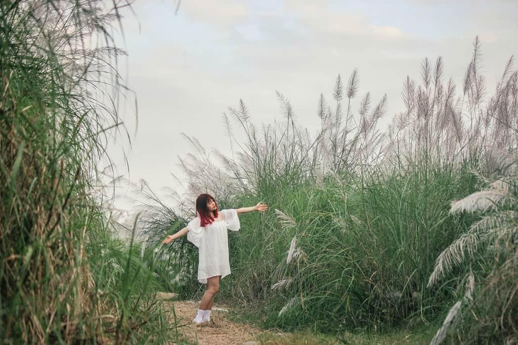Bãi đá sông Hồng