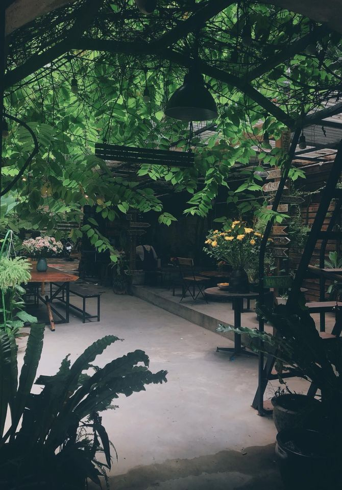 Cafe Nhà 41