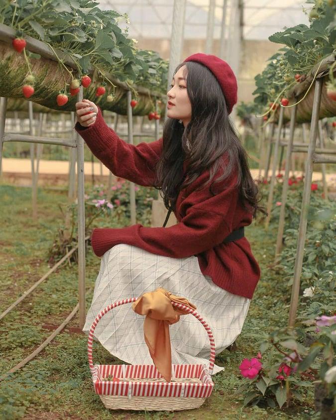 Ảnh đẹp tại Chimi Farm