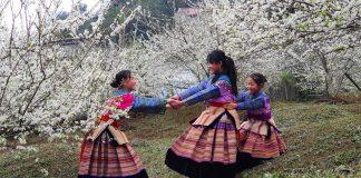 Du lịch Bắc Hà Lào Cai