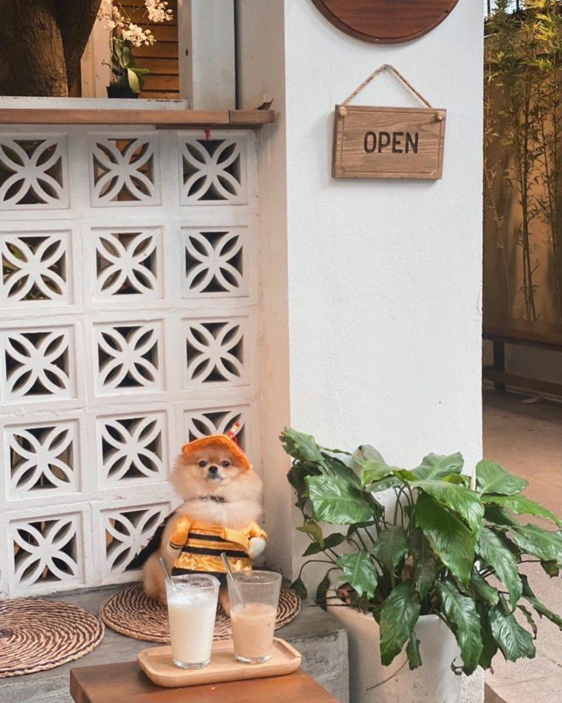 Cafe đẹp Hà Nội