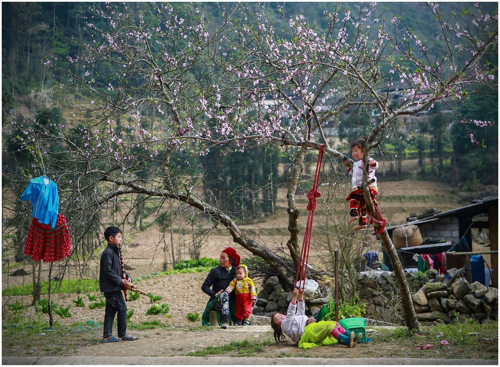Xuân về trên Hà Giang – Đừng bỏ lỡ điều thú vị khi du lịch Hà Giang tháng 3
