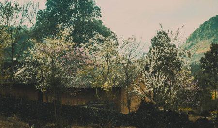 Du lịch Hà Giang tháng 3