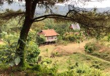 Tết Village Dai Lai