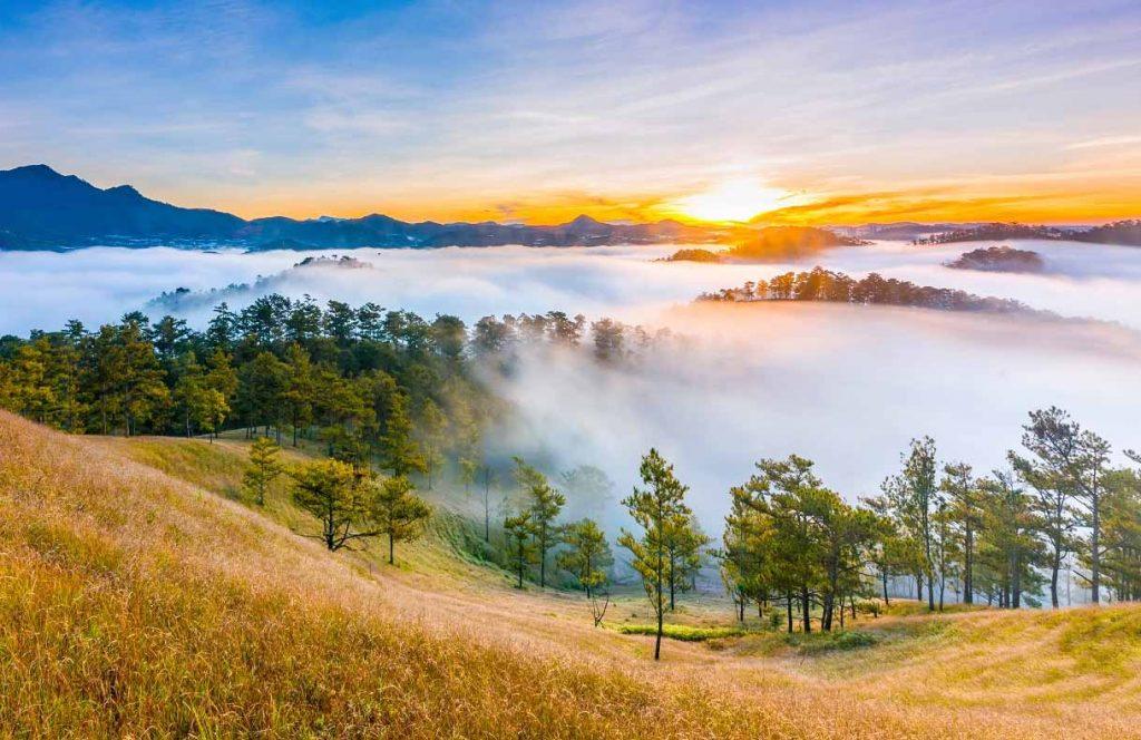Thung lũng vàng Đà Lạt